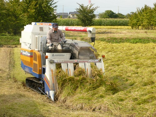 収穫は、少しでもお安くお届け出来る様に、コンバインを使用しております。