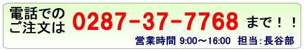 電話注文の電話番号